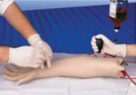 動脈穿刺トレーニング腕モデル